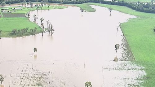 Aerial vision has shown normally green fields turned to brown marshes as water levels continue to rise south west of Brisbane.