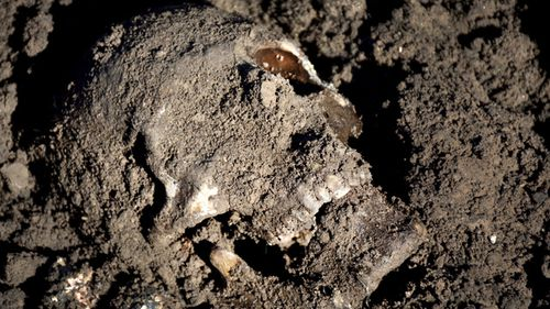 The Mass Graves Directorate of the Kurdish Regional Government shows a human skull in a mass grave containing Yazidis killed by Islamic State militants in the Sinjar region of northern Iraq. File photo dated May 2015.