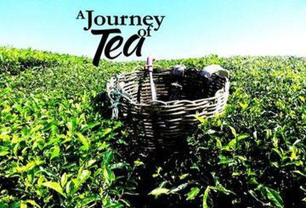 A Journey of Tea