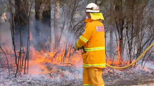 As well as water bombing, hundreds of fire fighters were deployed to tackle the suspicious blaze in Sydney's south-west. (9NEWS)