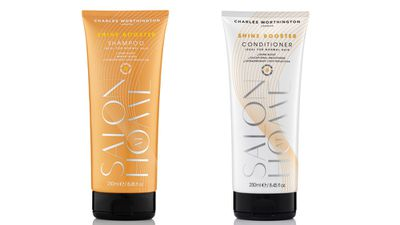 "For shine:<br><p><a href=""https://www.priceline.com.au/search?keyword=Charles+worthington"" target=""_blank"">Shine Booster Shampoo and Conditioner, $15.99 (50ml) each, Charles Worthington.</a></p>"