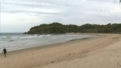British woman dies after going to son's rescue at NSW beach