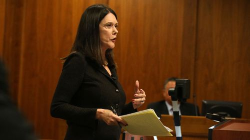 Defence attorney Kathleen Zellner prepares to question a witness