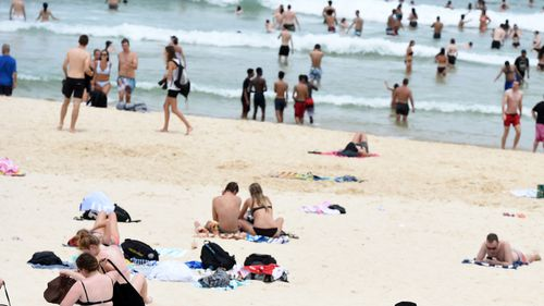 Sydney set to swelter through heatwave