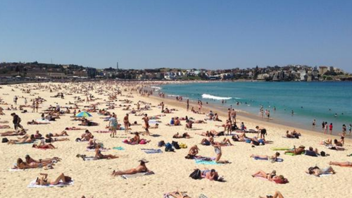 Total fire ban for Sydney, parts of NSW with temps set to soar