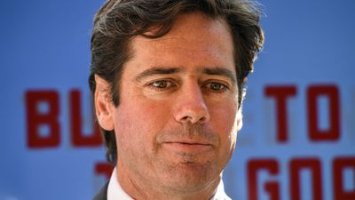 AFL chief executive Gillon McLachlan rules out segregation to stop fan violence