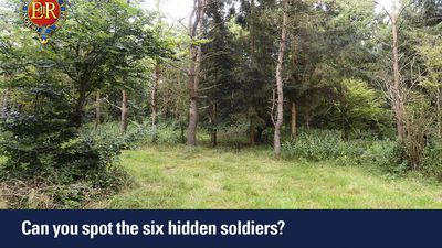 Six Household Cavalry soldiers are hidden in this photo