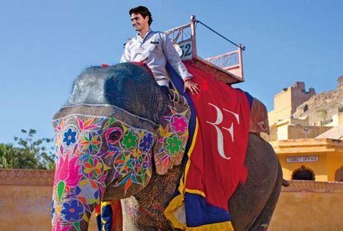 Federer's new logo on the back of an elephant. (Picture: Twitter)