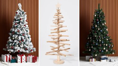 Christmas trees under $100: A round up of some of the best