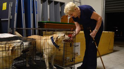 77-year-old Dottie Bostoch checks on her dog Leo at an evacuation centre. (AAP)