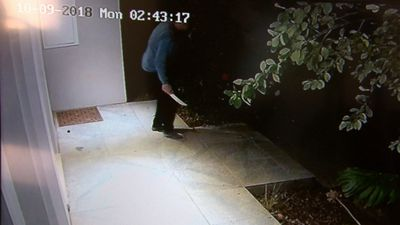Homeowner chases out would-be robbers with knife