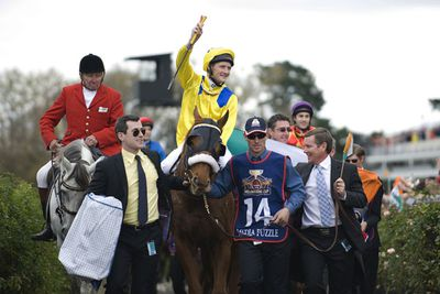 From Australia's home-grown new hit <i>The Cup</i> to faves like America's <em>Seabiscuit</em>, this movie genre is consistently inspiring in the way boxing films like <em>Rocky</em> and <em>Raging Bull</em> do justice to that sport. See which films qualified for our favourite horse racing movies.