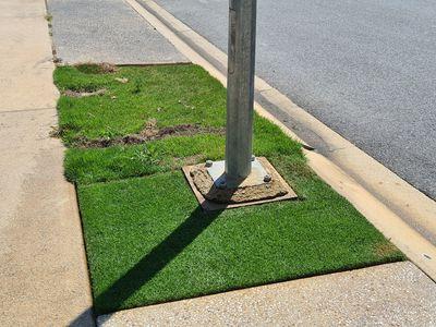 Australian Lawns