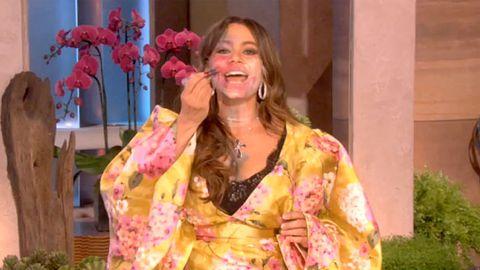 Watch: Ellen applies make-up to Sofia Vergara's face, boobs