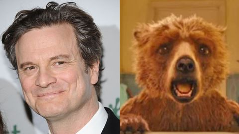 Colin Firth Paddington Bear