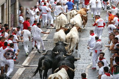 Bulls are riled up by festival-goers in Pamplona, Spain.