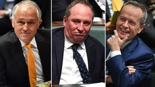 Malcolm Turnbull and Bill Shorten have traded verbal barbs over Barnaby Joyce's citizenship status. (AAP)