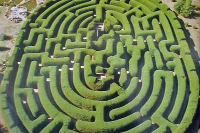 <strong>Wandiligong Maze, VIC</strong>