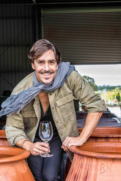 Ned Goodwin, Halliday Wine Companion Taster