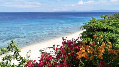 Cebu's tropical islands