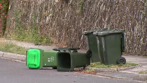 Trash-talking mayor orders bin bandits to bring in garbage