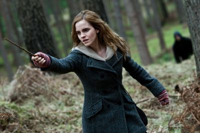 Yup, Harry and Ron would definitely be lost without their intelligent, feisty and resourceful Hermione.