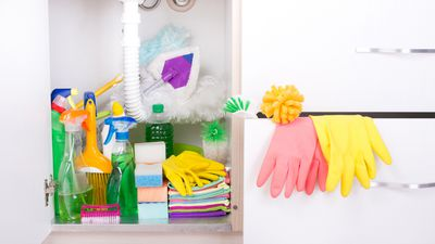 Sort out the cupboard under your sink