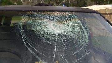 An Adelaide family of six say they are thankful to be alive after a brick was hurled at their car as they drove home from school.
