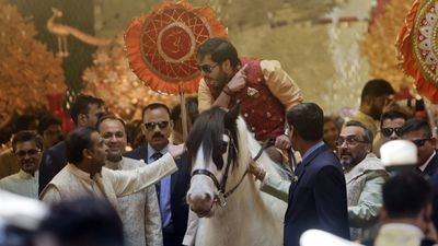 Anant Ambani arrives on horseback