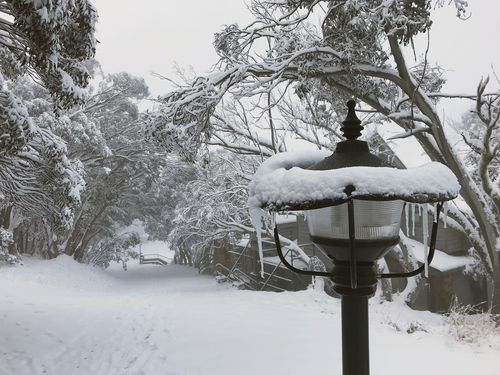 Mt Buller Ski Resort (AAP Image/Mt Buller Ski Resort)