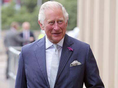 90s pop stars back Prince Charles' charity, January 2021
