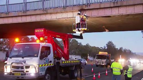The truck smashed into the overpass about 5am. Picture: 9NEWS