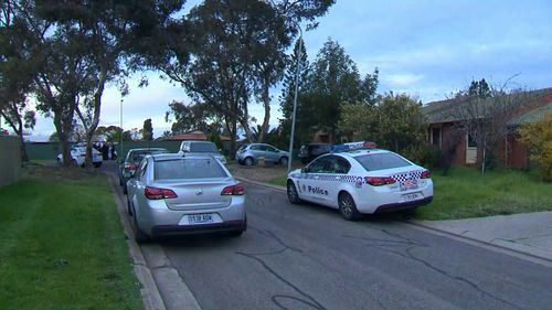 Another woman believed to be a relative, has been arrested at the scene. (9NEWS)
