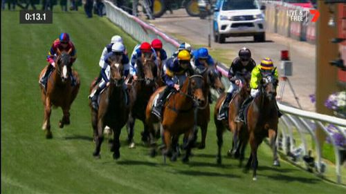 Waterhouse offered her top tips for Cup day.