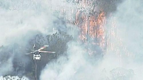 Pechey bushfire 2