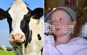 Young girl thought she was 'going to die' in cow attack near Geelong