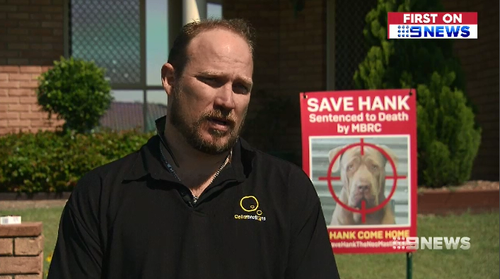 Hank's owner Nathan fought to have the dog's life spared, succeeding on his third go.