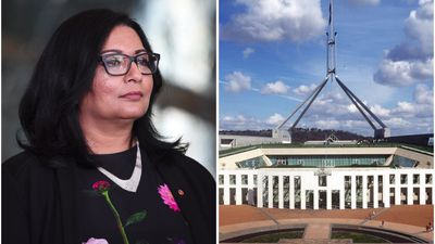 Senator Mehreen Faruqi: 'I'm here to shake up the status quo'
