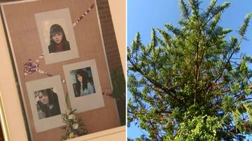Murdered teen's parents fight to keep family home with 'memorial tree'