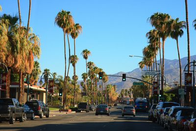 <strong>Palm Springs, California</strong>