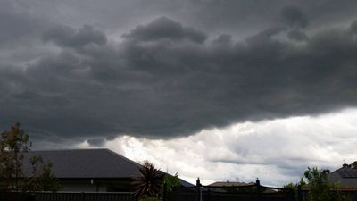 Dark skies over Mardi on the Central Coast. (Supplied / Julie Fuller)