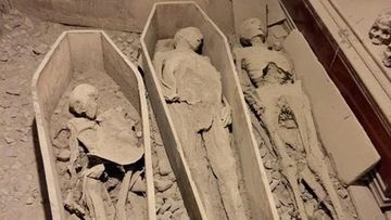 800-year-old 'Crusader' mummy has been decapitated at an Irish church