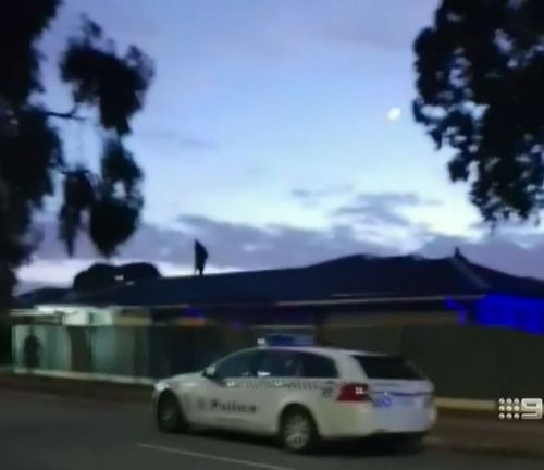 A wanted man has tried to get away from police in Adelaide by jumping from roof to roof. Picture: 9NEWS
