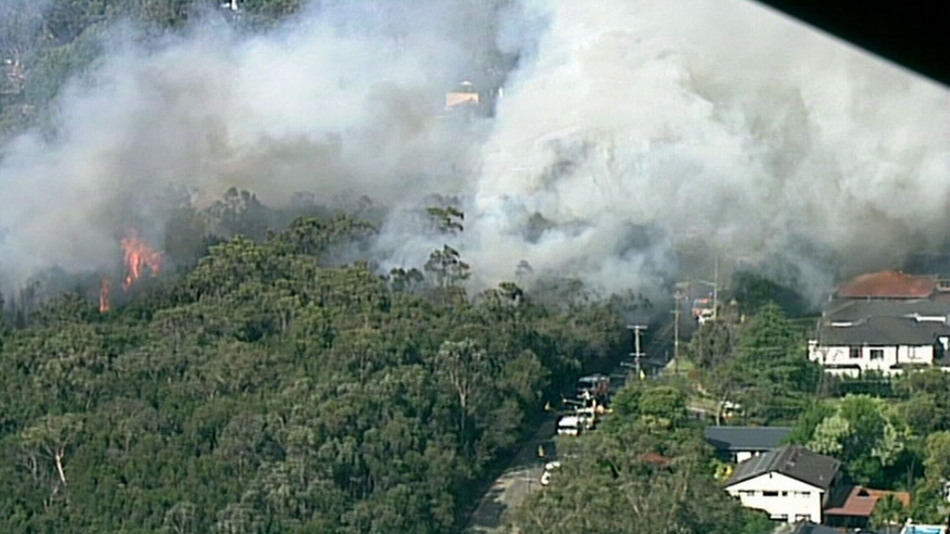 Turramurra bushfire threatening homes in Sydney's Upper North Shore