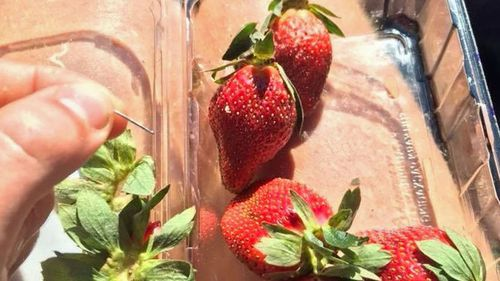 Another needle was found inside a different strawberry from the same punnet.
