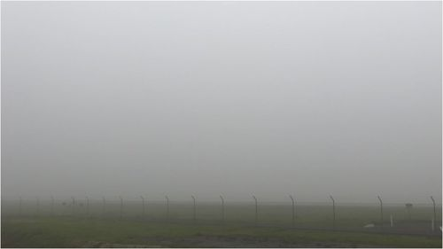 A thick blanket of fog is causing flight delays at Adelaide Airport.