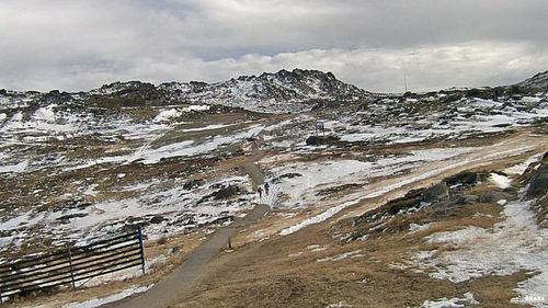 Kosciusko Walking Track on Tuesday. Up to 40cms of snow is forecast to fall on the NSW and Victorian Alps later this week (THREDBO SNOWCAM)