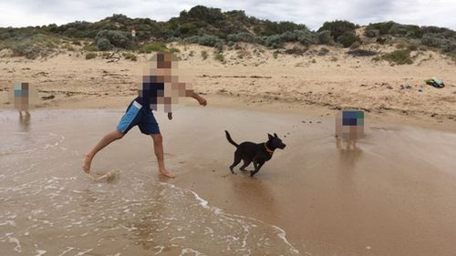 Perth family claims dog 'baited' after threatening letter