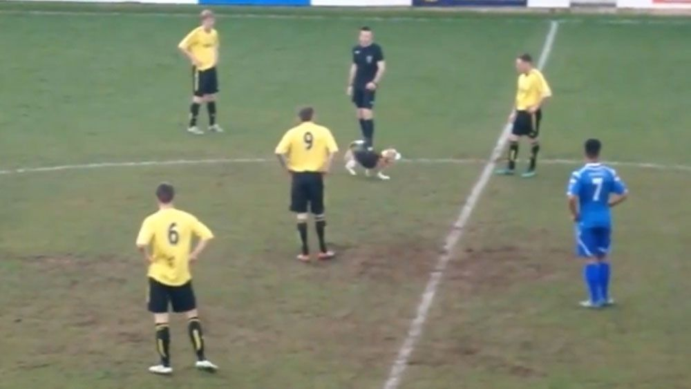 Beagle turns English regional football match into dog day afternoon