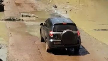 A car full of tourists in Australia's Top End was stopped in its tracks by a group of saltwater crocodiles.